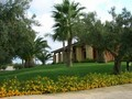 Villa Lisa Bed and Breakfast (Paceco)
